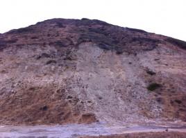 Torrey Pines Preserve 004