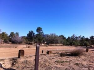 Camping Site at Pinyon Flats Campground