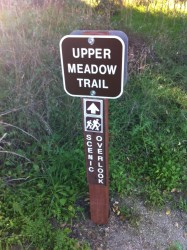 Great Signs along the trail