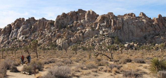 Joshua Tree National Park attracts the rock climbing crowd. These brave folks are going rock climbing.