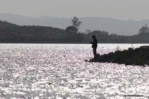 A lone fishermen