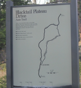 Blacktail Plateau Drive- a 7 mile dirt road on the North side of Yellowstone