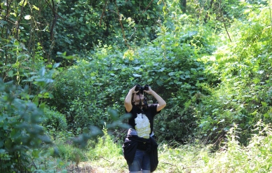 I'm doing what I love. Birding!