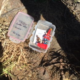 The geocache box