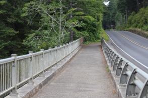 Bridges on the path