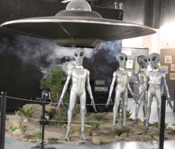 Gray Alien Display