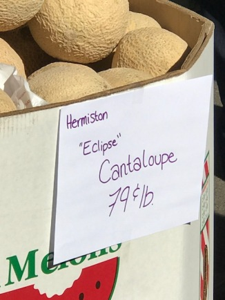 Oregon Eclipse Cantaloupe lol