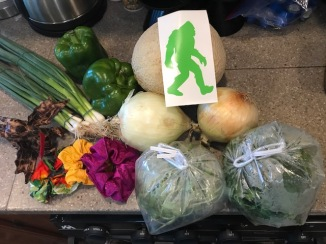 Our Haul from the Farmers Market